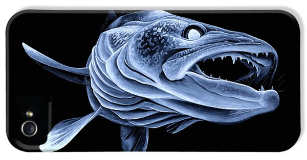 Low Light Walleye IPhone 5 Case