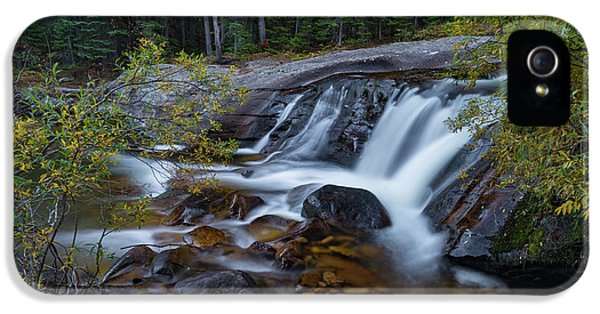 Lower Copeland Falls IPhone 5 Case by Gary Lengyel
