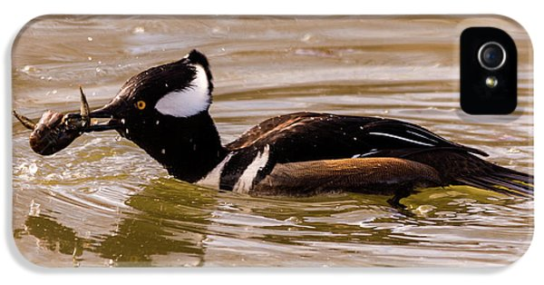 IPhone 5 Case featuring the photograph Lunchtime For The Hooded Merganser by Randy Scherkenbach