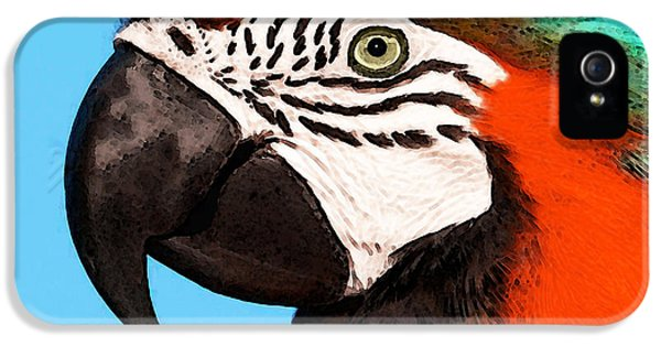 Macaw Bird - Rain Forest Royalty IPhone 5 / 5s Case by Sharon Cummings