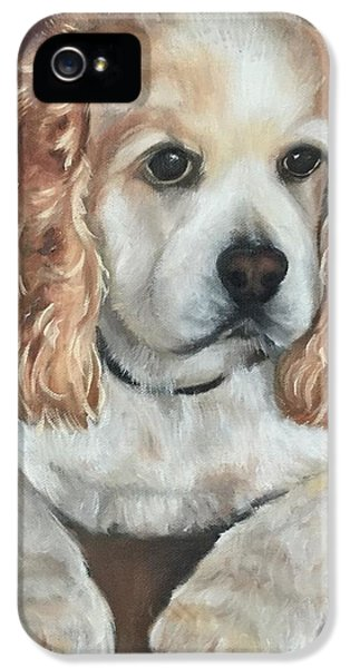 Cocker Spaniel - Maddie IPhone 5 Case by FayBecca