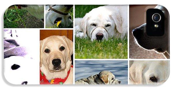 Maddie's Photo Collage IPhone 5 Case by Karen  Majkrzak