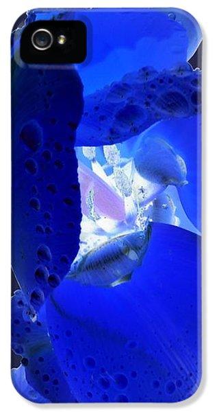 iPhone 5 Case - Magical Flower I - Blue Velvet by Orphelia Aristal