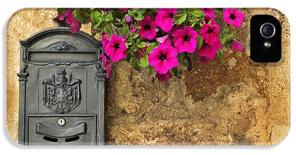 Mailbox With Petunias IPhone 5 Case