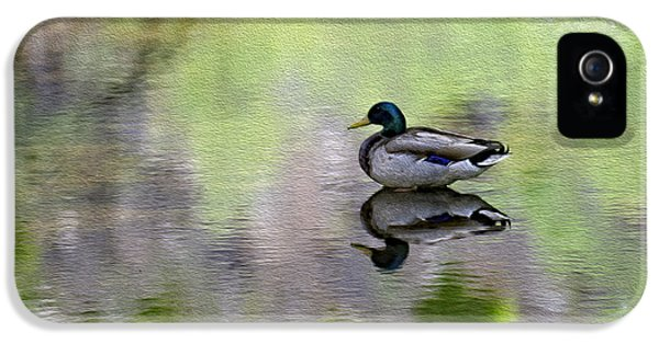 IPhone 5 Case featuring the photograph Mallard In Mountain Water by Mark Myhaver