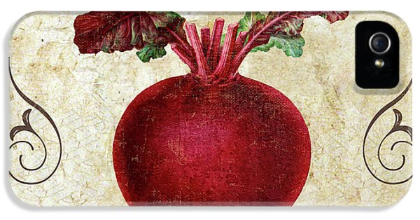 Mangia Radish IPhone 5 Case by Mindy Sommers