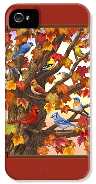 Maple Tree Marvel - Bird Painting IPhone 5 Case by Crista Forest