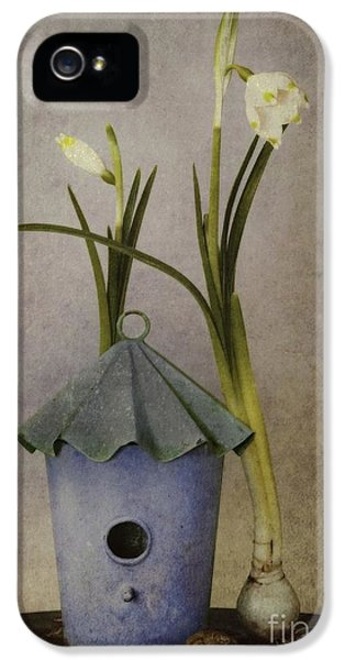 Flowering iPhone 5 Cases - March iPhone 5 Case by Priska Wettstein