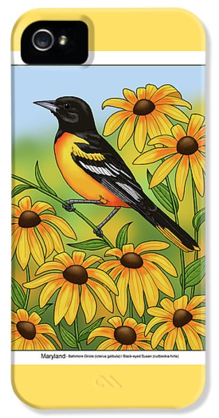 Maryland State Bird Oriole And Daisy Flower IPhone 5 Case