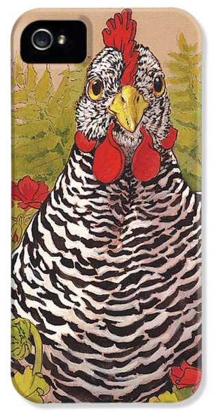 Chicken iPhone 5 Case - Matilda In The Geraniums by Tracie Thompson