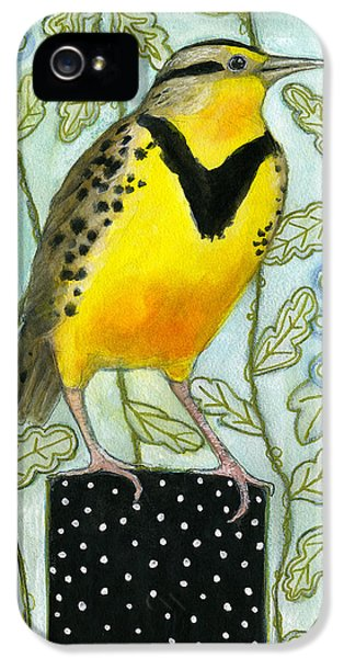 Meadowlark Black Dot Box IPhone 5 Case by Blenda Tyvoll