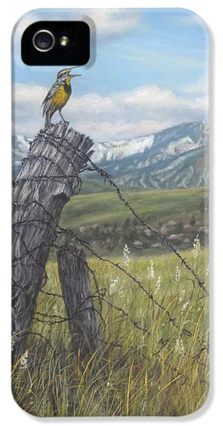 Meadowlark Serenade IPhone 5 / 5s Case by Kim Lockman