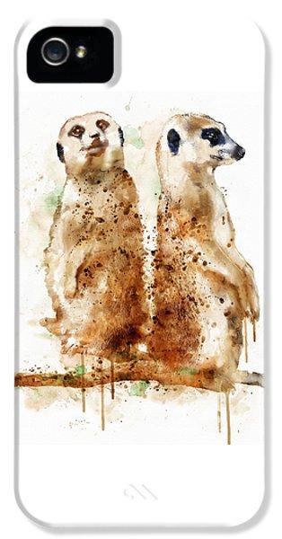 Meerkats IPhone 5 / 5s Case by Marian Voicu