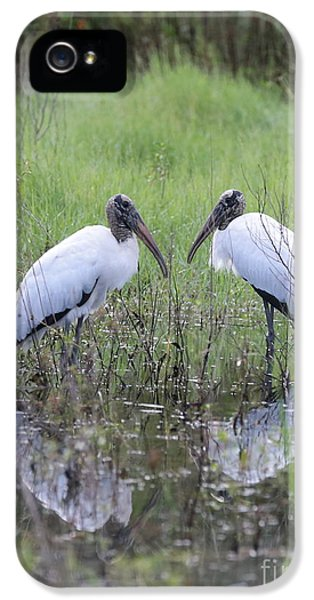Meeting Of The Minds IPhone 5 Case by Carol Groenen