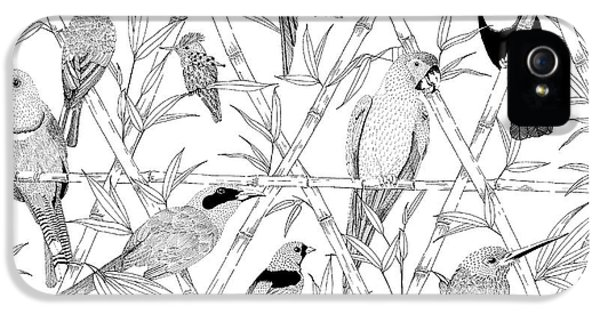 Menagerie Black And White IPhone 5 Case by Jacqueline Colley