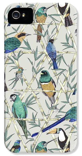Menagerie IPhone 5 Case by Jacqueline Colley