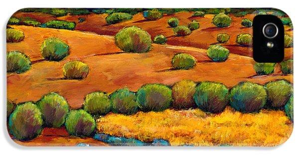 Desert iPhone 5 Case - Midnight Sagebrush by Johnathan Harris