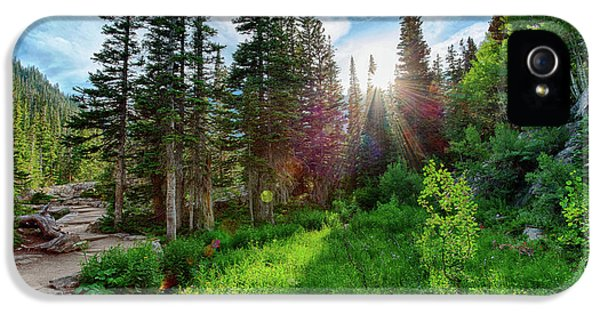 IPhone 5 Case featuring the photograph Midsummer Dream by David Chandler