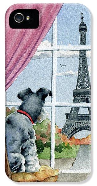 Paris iPhone 5 Case - Miniature Schnauzer In Paris by David Rogers