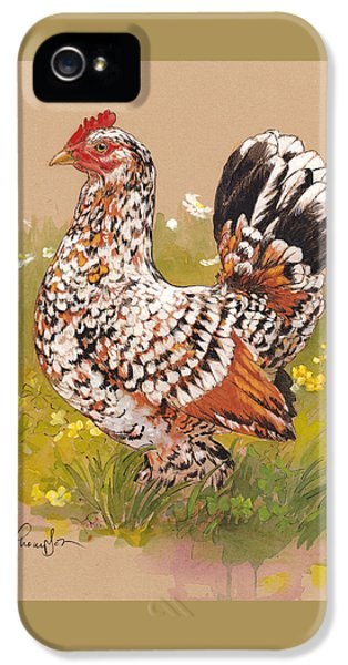 Chicken iPhone 5 Case - Miss Millie Fleur by Tracie Thompson