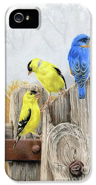 Finch iPhone 5 Case - Misty Morning Meadow by Sarah Batalka