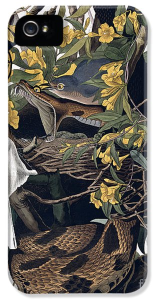 Mocking Birds And Rattlesnake IPhone 5 / 5s Case by John James Audubon