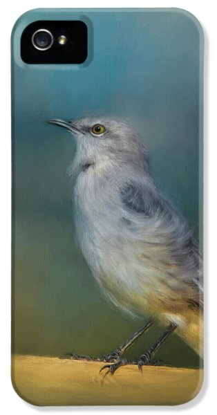 Mockingbird On A Windy Day IPhone 5 Case by Jai Johnson