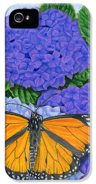 Monarch Butterflies And Hydrangeas IPhone 5 Case