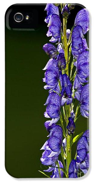 Monkshood Flowers IPhone 5 Case