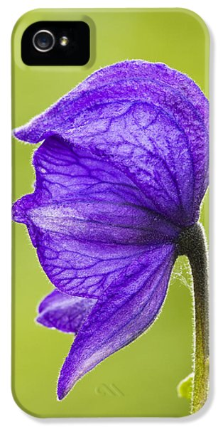 Monkshood IPhone 5 Case by Ray Bulson
