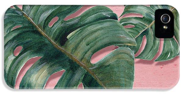 Monstera Leaf  IPhone 5 Case by Mark Ashkenazi