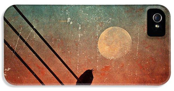 Moon iPhone 5 Case - Moon Talk by Tara Turner