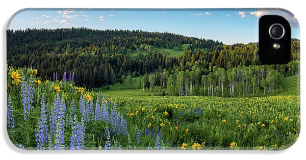 Morning Meadow IPhone 5 Case