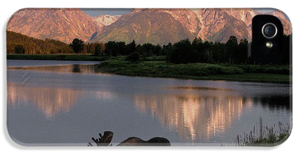 Mountain iPhone 5 Case - Morning Tranquility by Sandra Bronstein