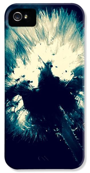 iPhone 5 Case - Moth Man by Orphelia Aristal