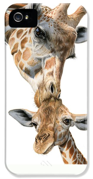 Mother And Baby Giraffe IPhone 5 Case by Sarah Batalka