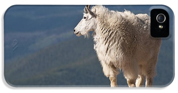 IPhone 5 Case featuring the photograph Mountain Goat by Gary Lengyel