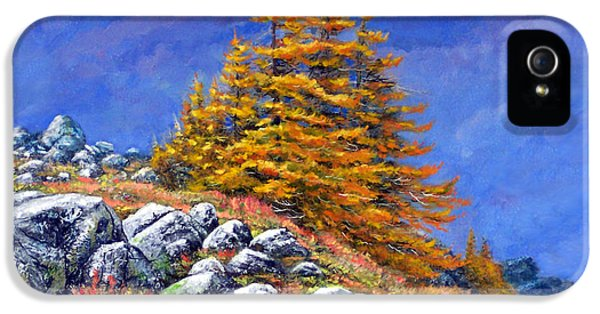 Mountain Tamaracks IPhone 5 / 5s Case by Frank Wilson