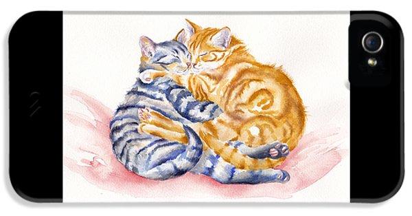 Cat iPhone 5 Case - My Furry Valentine by Debra Hall