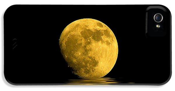 Moon iPhone 5 Case - My Harvest Moon by Lynn Andrews