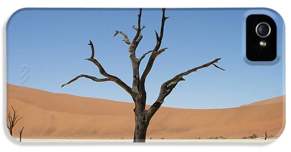 Namibia Desert IPhone 5 Case
