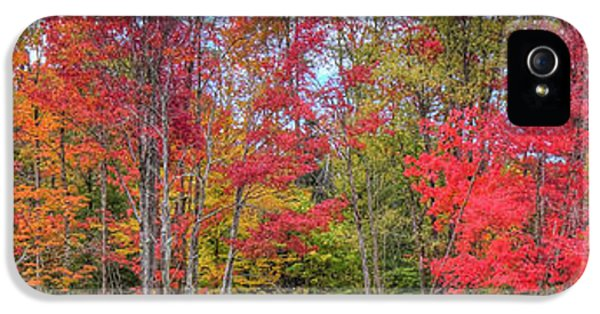 IPhone 5 Case featuring the photograph Natures Autumn Palette by David Patterson