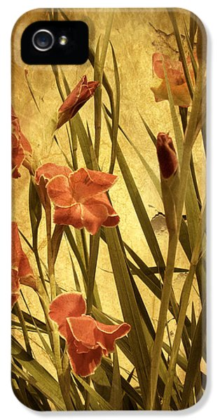 Nature's Chaos In Spring IPhone 5 Case