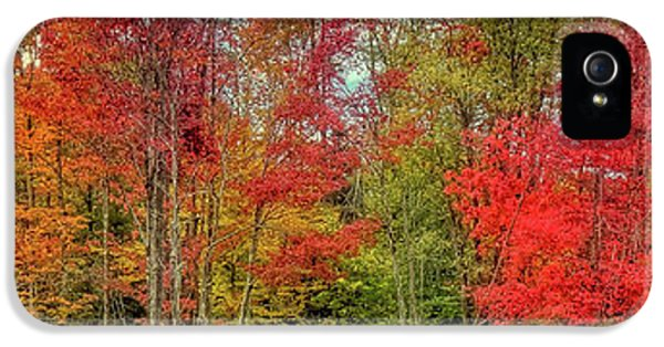 IPhone 5 Case featuring the photograph Natures Fall Palette by David Patterson