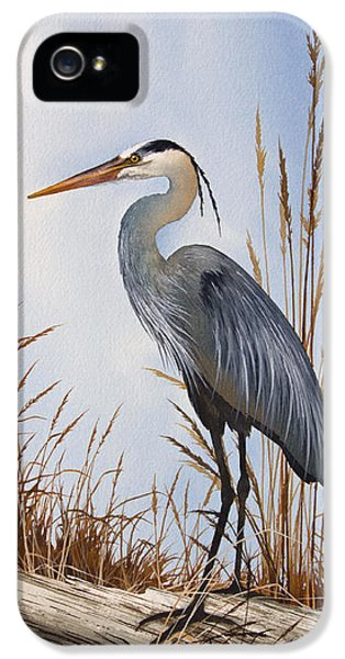 Nature's Gentle Beauty IPhone 5 Case by James Williamson
