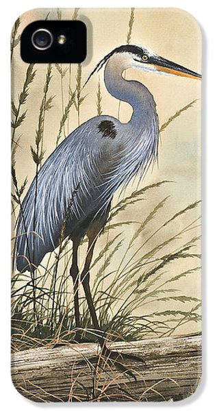 Nature's Harmony IPhone 5 Case by James Williamson