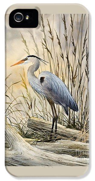 Heron iPhone 5 Case - Nature's Wonder by James Williamson