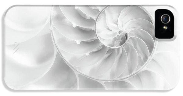 Nautilus Shell In High Key IPhone 5 Case by Tom Mc Nemar