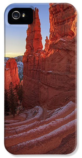 Navajo Loop IPhone 5 Case