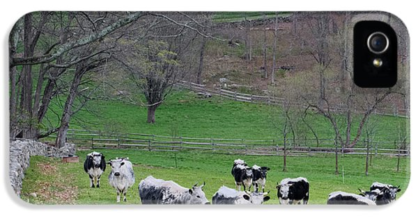 IPhone 5 Case featuring the photograph New England Spring Pasture Square by Bill Wakeley
